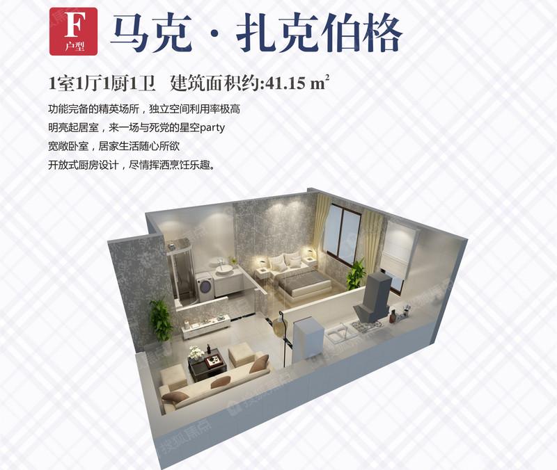 六期COCO公寓F户型-1室1厅1卫-41.1㎡