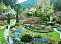 绿色西宁再出发 花园城市建设更可期